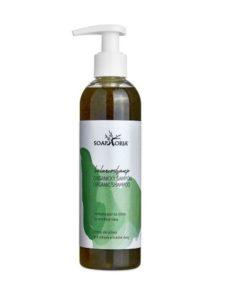 Organický šampón BalancoShamp na mastné vlasy - prírodná vlasová kozmetika bez parabénov, parfumov, sulfatov, silikonov. Vegánska kozmetika