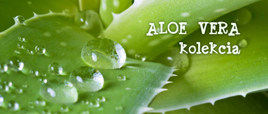 banner-aloe